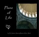 Plane of Life