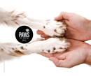 2012 Paws For Charity Art Book Project