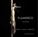 FLAMENCO Bailaores