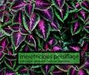 meretricious persiflage