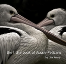 the little book of Aussie Pelicans