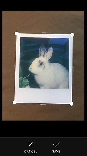 scan family photos with photomyne