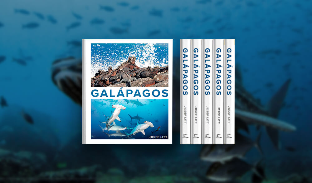 GALÁPAGOS by Josef Litt: Made with Large Order Services