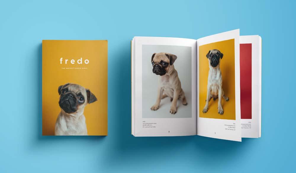 A pet memory book