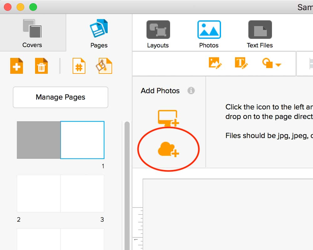 Click on the cloud icon in the Add Photos panel.