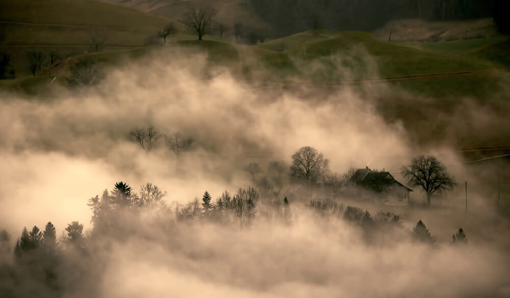 How to Photograph Fog
