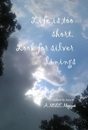 Life is too short. Look for silver linings - pocket and trade book