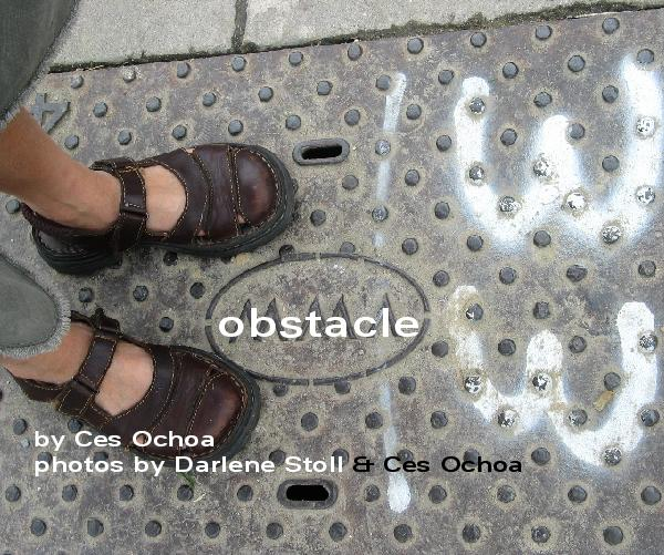 Click to preview obstacle 33 photo book