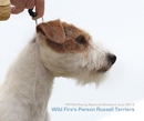 Wild Fire's Parson Russell Terriers - Arts & Photography photo book