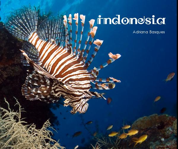 Click to preview Indonesia photo book