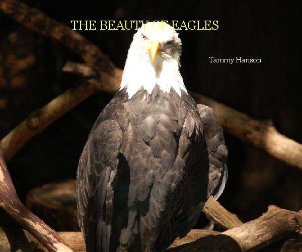 View THE BEAUTY OF EAGLES by Tammy Hanson
