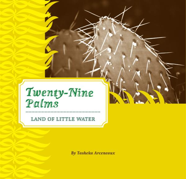 View Twenty-Nine Palms by Tasheka Arceneaux