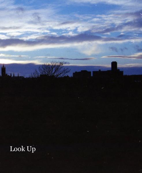 View Look Up by Becca Moffat
