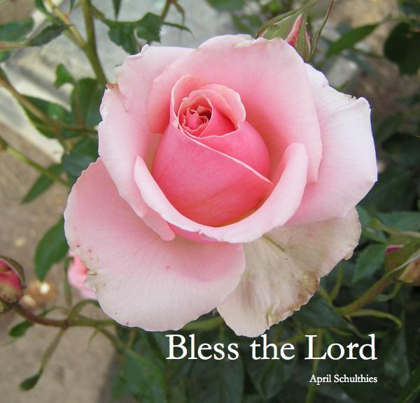 View Bless the Lord by April Schulthies