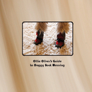 Oliver's Guide to Boot Wearing - Pets photo book
