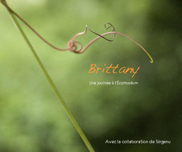 View Brittany by Brittany Blain & Singenu