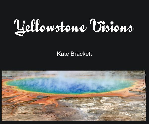 View Yellowstone Visions by Kate Brackett