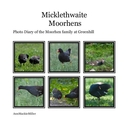 Micklethwaite Moorhens - Arts & Photography photo book