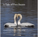 A Tale of Two Swans - photo book