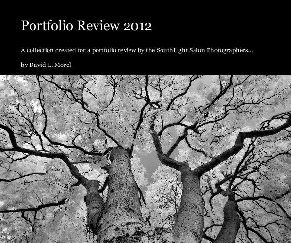 Portfolio Review 2012