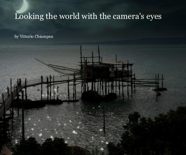 Visualizza Looking the world with the camera's eyes di Vittorio Chiampan