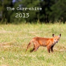 The Carr-chive 2013 - Arts & Photography photo book