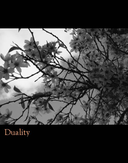 View Duality by Virginia Arana Greene