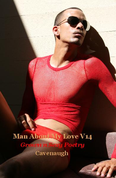 View Man About My Love Vol 14 by Cavenaugh