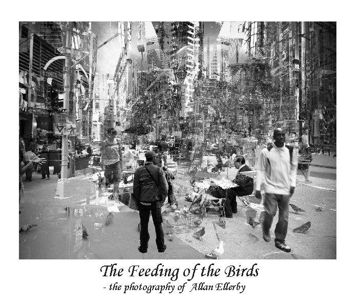 Click to preview The Feeding of the Birds photo book