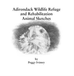 Ver Adirondack Wildlife Refuge and Rehabilitation Animal Sketches por Peggy Ivimey