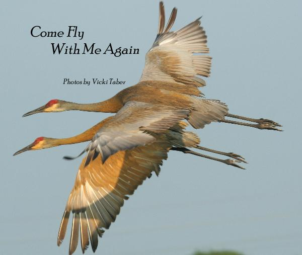 Ver Come Fly With Me Again por Photos by Vicki Taber