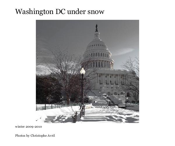 Click to preview Washington DC under snow photo book