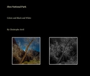 Zion National Park - Arts & Photography photo book