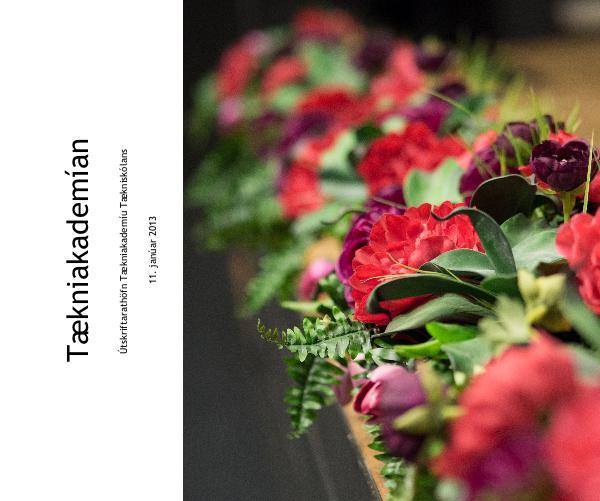Haga clic para obtener una vista previa Tækniakademían libro de fotografías