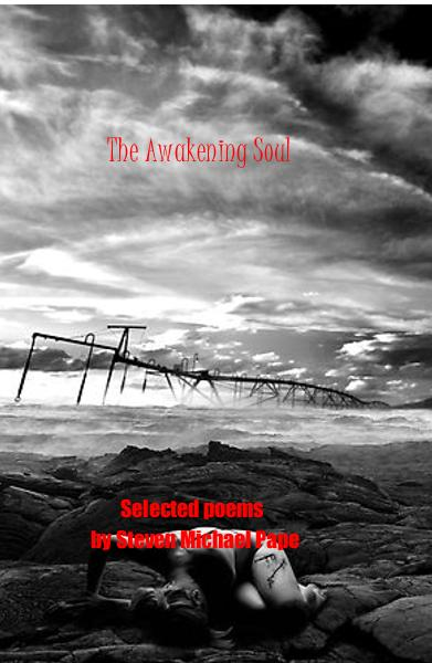 View The Awakening Soul by Steven Michael Pape