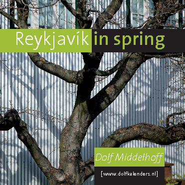 Click to preview Reykjavík in spring photo book