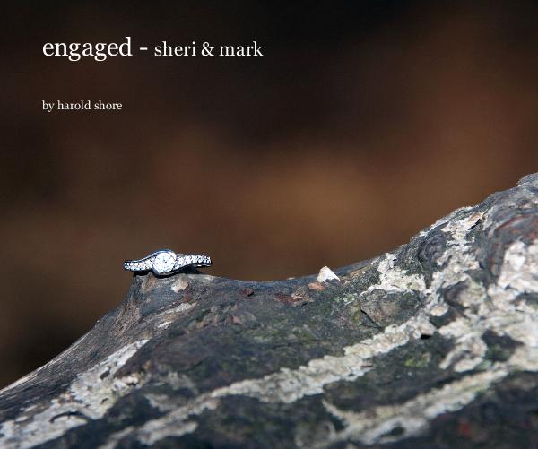 View engaged - sheri & mark by harold shore