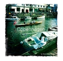 Copenhagen - Arts & Photography photo book