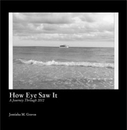 How Eye Saw It A Journey Through 2012, as listed under Children