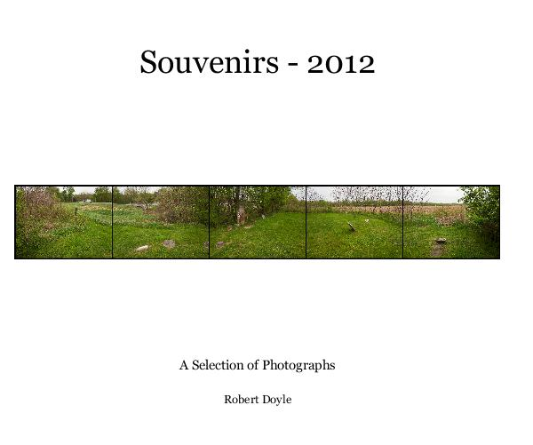 View Souvenirs - 2012 by Robert Doyle