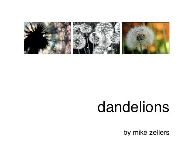 Click to preview dandelions photo book