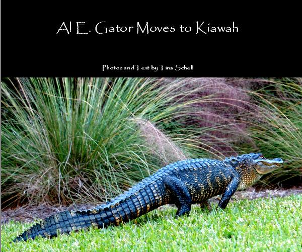 View Al E. Gator Moves to Kiawah by Photos and Text by Tina Schell