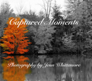 Captured Moments - photo book