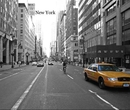 New York - photo book
