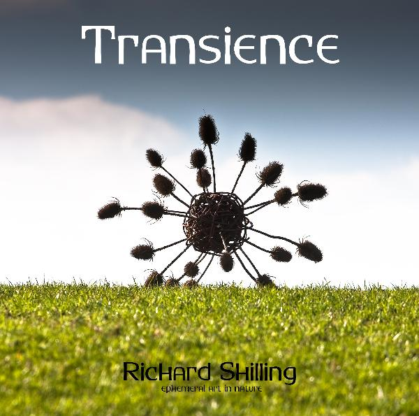 Click to preview Transience (Special Edition) photo book