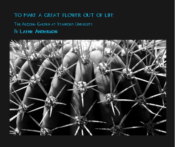 Ver To Make A Great Flower Out Of Life por Layne Anderson