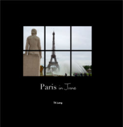 View Paris in June by TK Long
