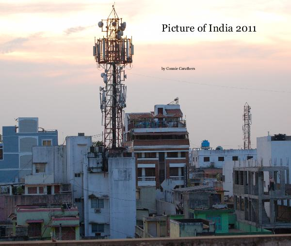 Picture of India 2011