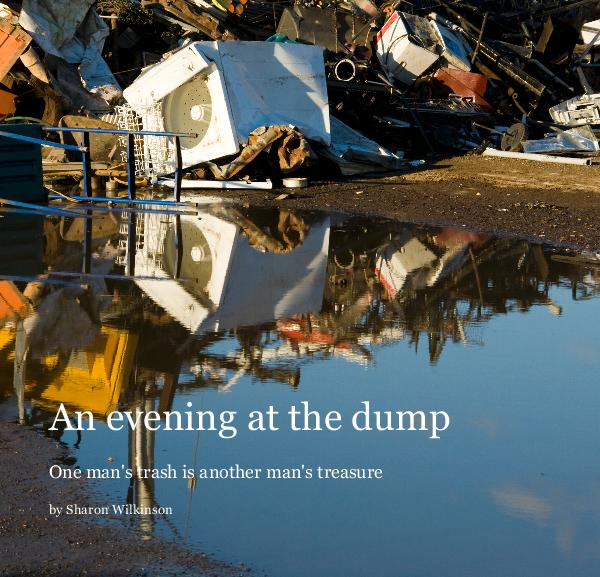 View An evening at the dump by Sharon Wilkinson