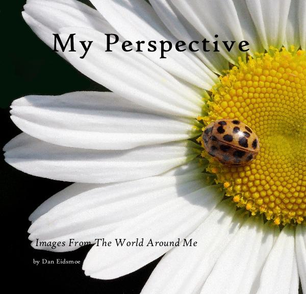 Click to preview My Perspective photo book